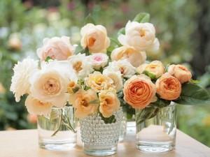 flor em copo google