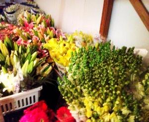 a casa cheia flor e casa