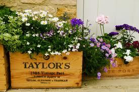 caixa de madeira+flores+acasacheia