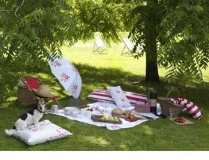picnic-decor-2